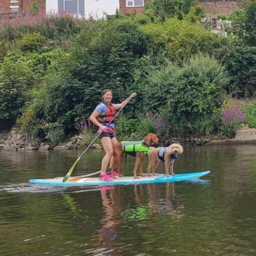 Hire a Canoe Shrewsbury SUP Hire Frankwell Shropshire River Severn