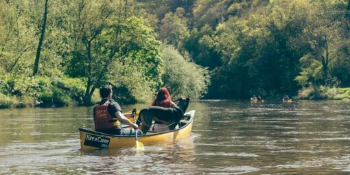 Hire a Canoe Doggy Paddle Dog Friendly Canoeing River Severn